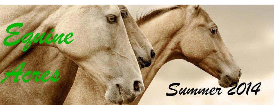 Equine Acres
