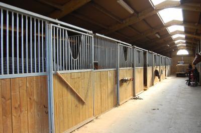 L'équitation, plus qu'un sport : Une passion, une vie ! ♥ Bureau12
