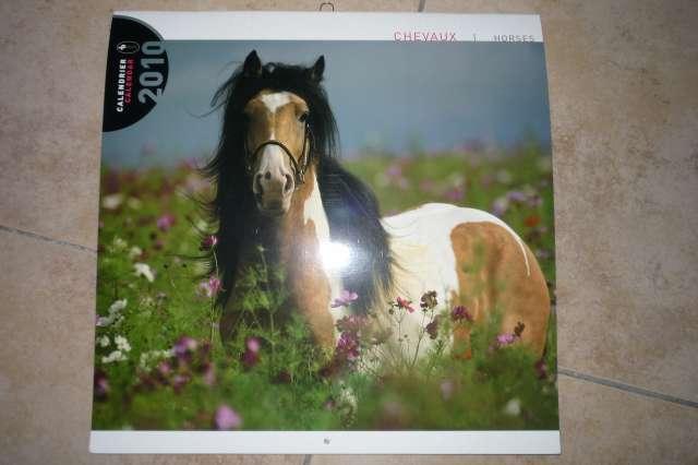 Calendriers chevaux 2009 et  2010 P1230010