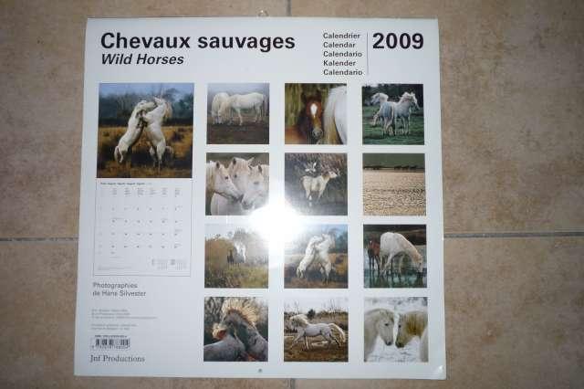Calendriers chevaux 2009 et  2010 P1230014