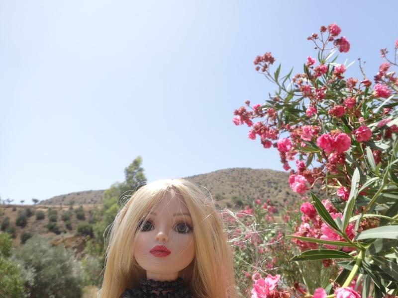 Mes vacances 2014 en compagnie d'Ellowyne  par Mellody Dsc02411