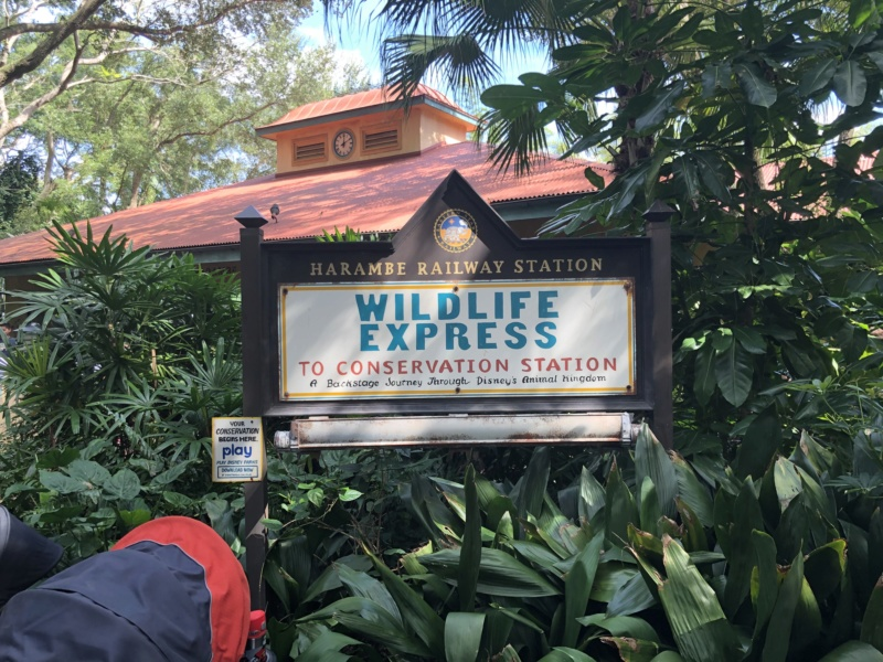 Trip Report : WDW et Universal - Toussaint 2019 en tête à tête avec ma  fille   - Page 2 Img_1710