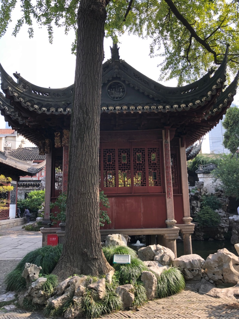 Une semaine à Shanghai et Disneyland Shanghai en novembre 2018: TR - infos et bons plans Img_5417