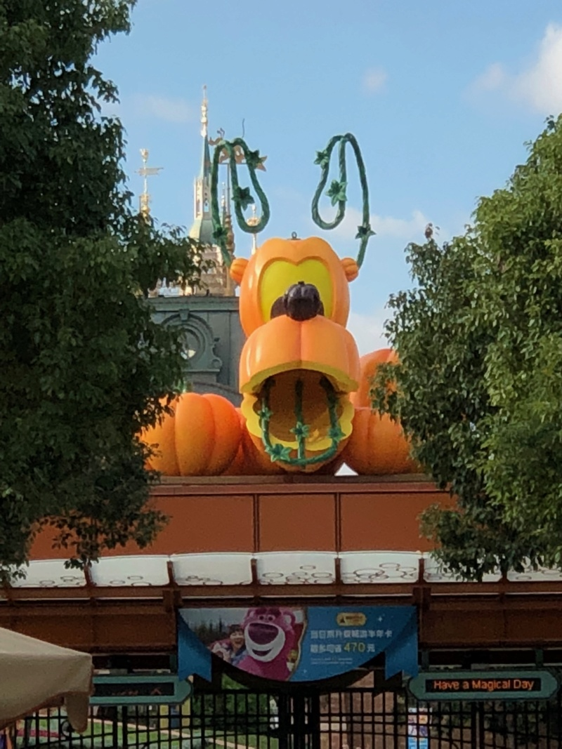 Une semaine à Shanghai et Disneyland Shanghai en novembre 2018: TR - infos et bons plans - Page 3 Img_6424