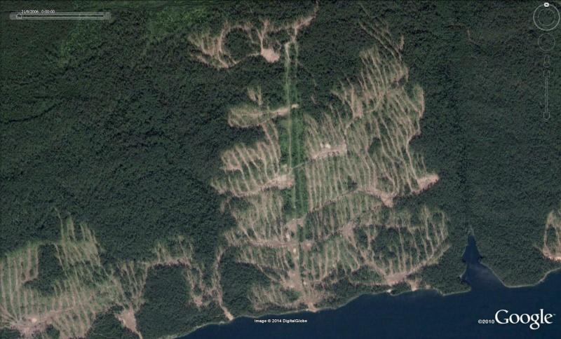 Exploitation forestière à Bratsk, Oblast d'Irkoutsk - Russie [C'est quoi ?] For10
