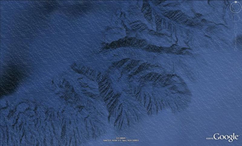 Île Bermeja - Mexique Ile12