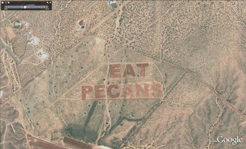 """Ecriture """"Eat Pecans"""", Las Cruces, Nouveau Mexique - USA Pec10"""