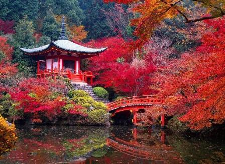 JARDINS JAPONAIS Garden10
