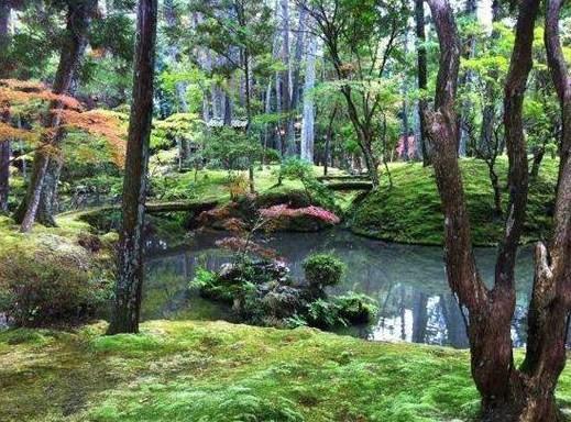 JARDINS JAPONAIS Jardin10