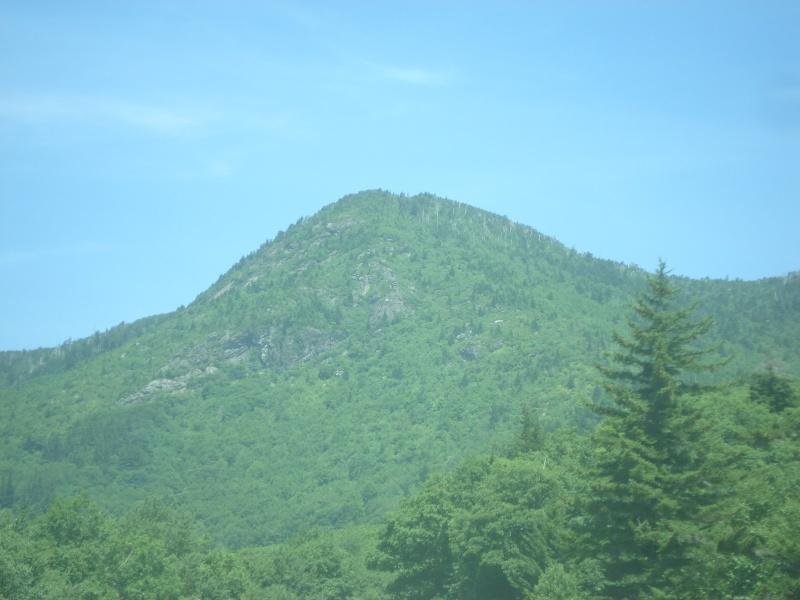 Brookies atop Mt Mitchell Dsc03211