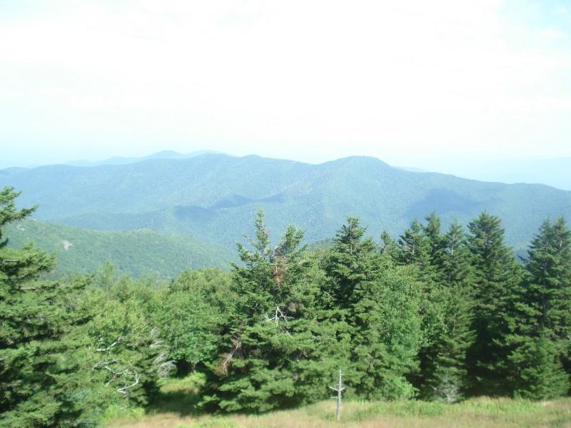 Brookies atop Mt Mitchell Dsc03313