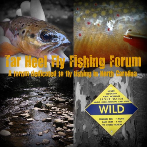 Tar Heel Fly Fishing Forum Thfff10