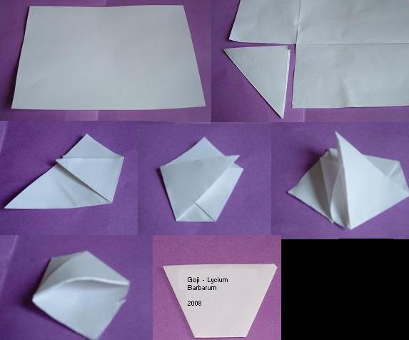 Troc de graines, boutures et plantes : ajoutez votre liste ! Origam10