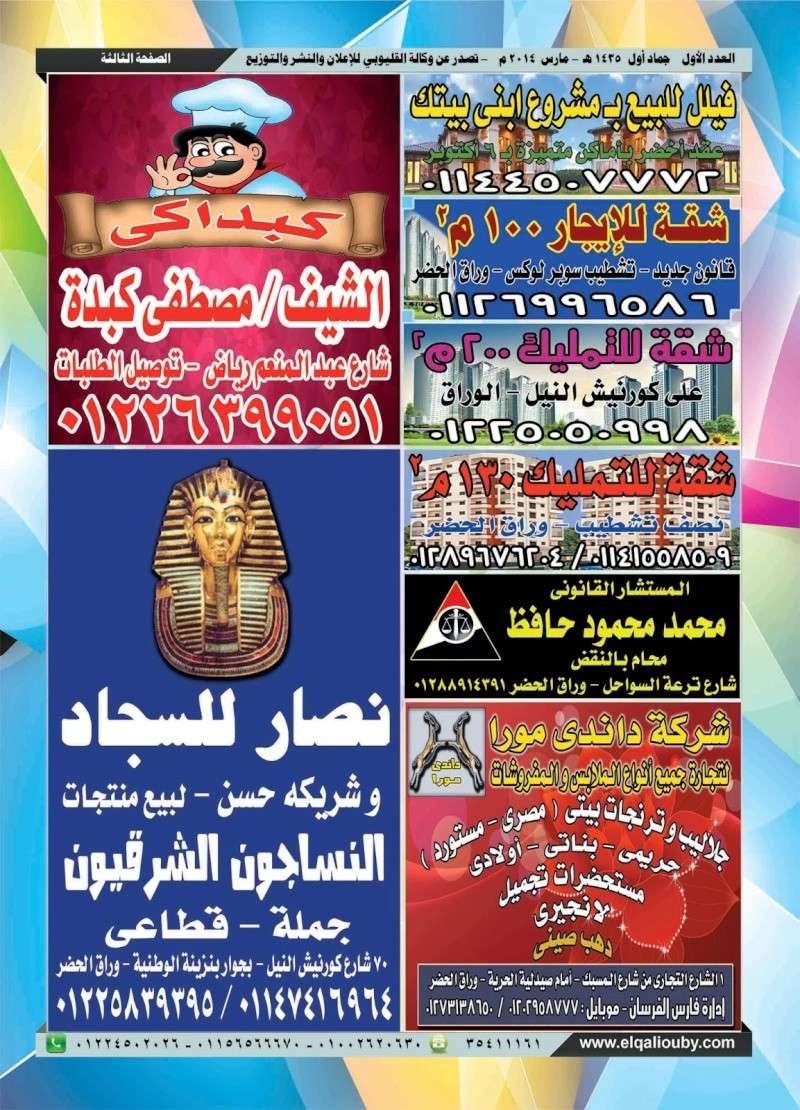 جريدة أخبار الإعلانات - العدد الأول 310