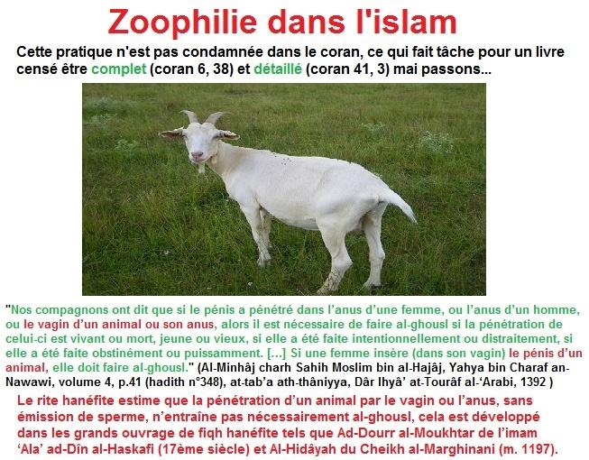 Zoophilie halal ??? Coran_10