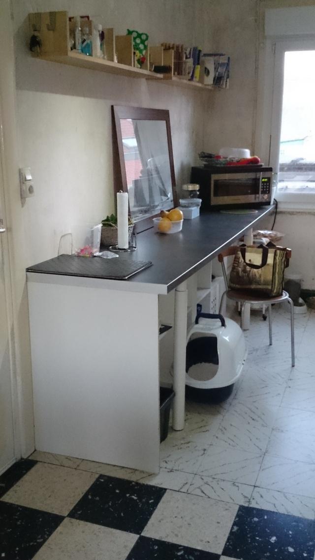 [jl-l] début de réflexion sur ma cuisine ... ergonomie ... - Page 5 Dsc_0213
