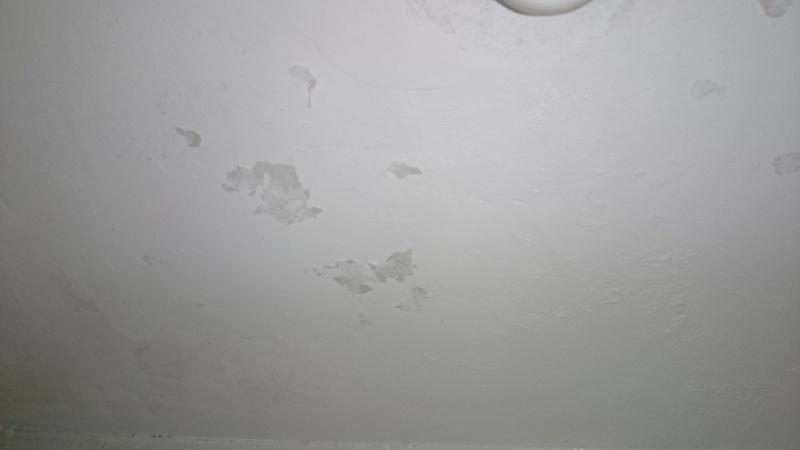 souci peinture plafond  Dsc_4713