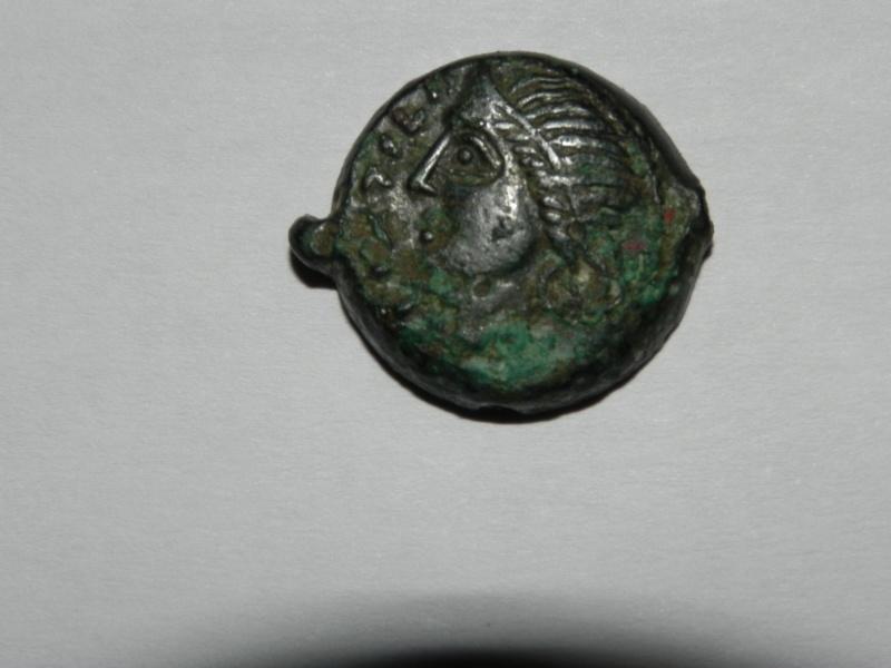 Bronze des Carnutes Dscn2310