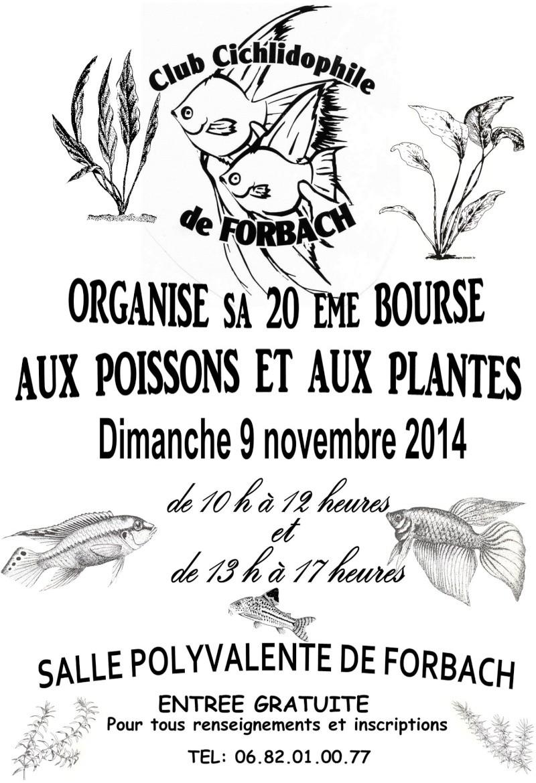 Bourse à Forbach - 09 Novembre 2014   Affich12