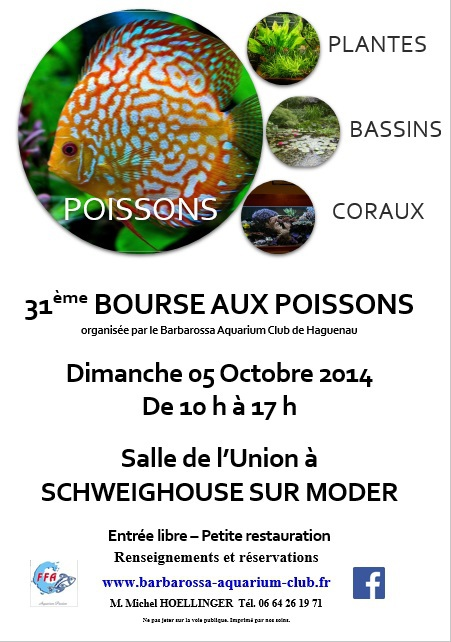 Bourse à Schweighouse-sur-Moder - Dimanche 5 octobre 2014   Schwei10