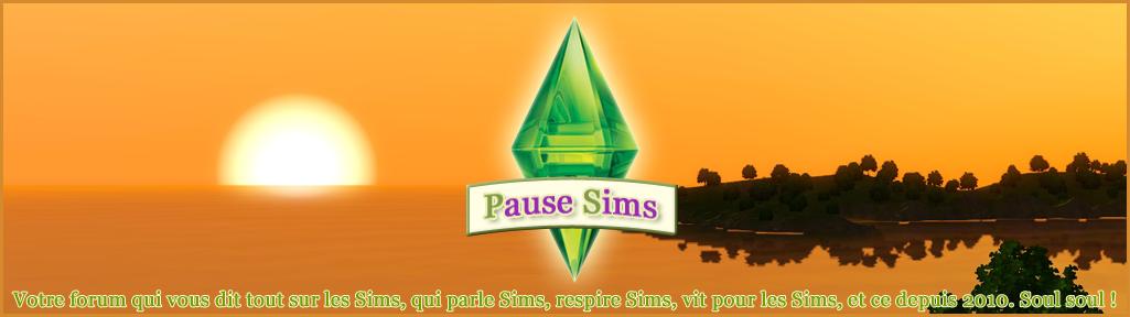 Pause Sims