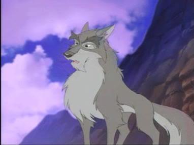Nava - wolf 12500010
