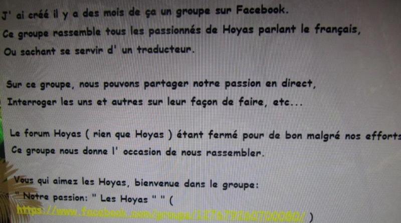 pour les passionnés de Hoya une information  00423