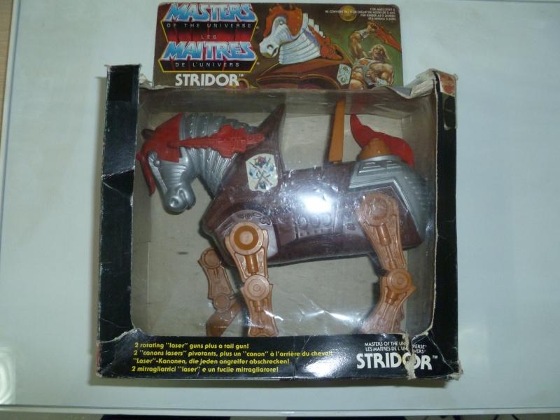 STRIDOR - MASTERS Strido11