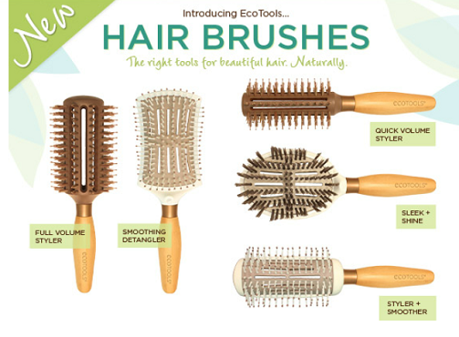 $3.00 off One (1) EcoTools Hair Brush Coupon Ecotoo10