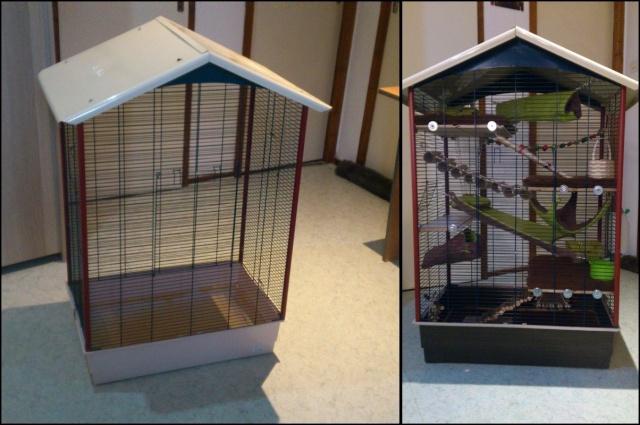 Photos de vos cages - Page 3 Avant_11