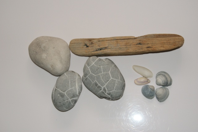 42 - La pierre, le bois, le fer... au jardin...  Photos reçues Dsc02411
