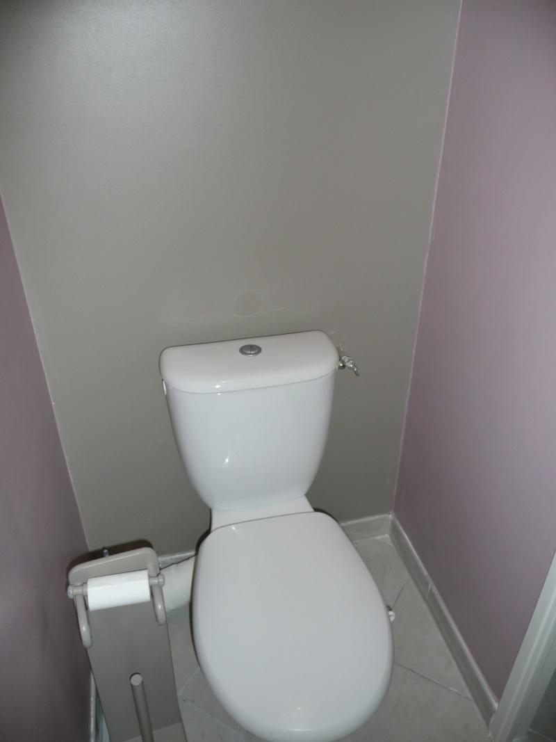 besoins de conseils pour mes toilettes P1060613