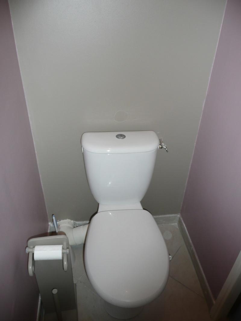 besoins de conseils pour mes toilettes P1060614
