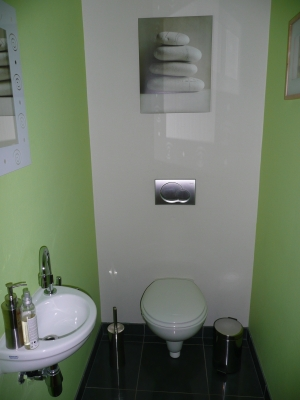besoins de conseils pour mes toilettes Toil210