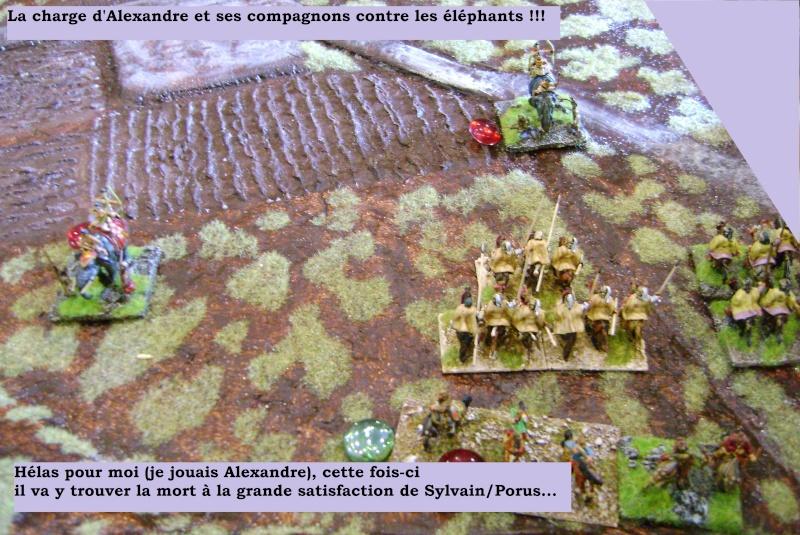 Antiquité : Hydaspes 326 av. JC Dsc03128