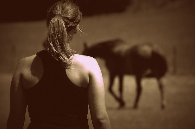 c'est le printemps !! immortaliser votre cheval pour de beaux souvenirs ! contactez moi :)  Dsc_2810