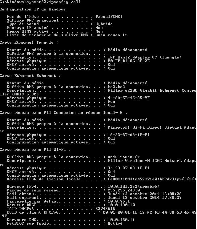 [Résolu] Problème DNS Ipconf10