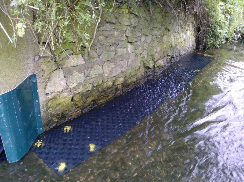 More Eels tiles on the Hogsmill 2nd June Wp_00021