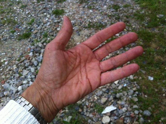 Vos mains... Screen25