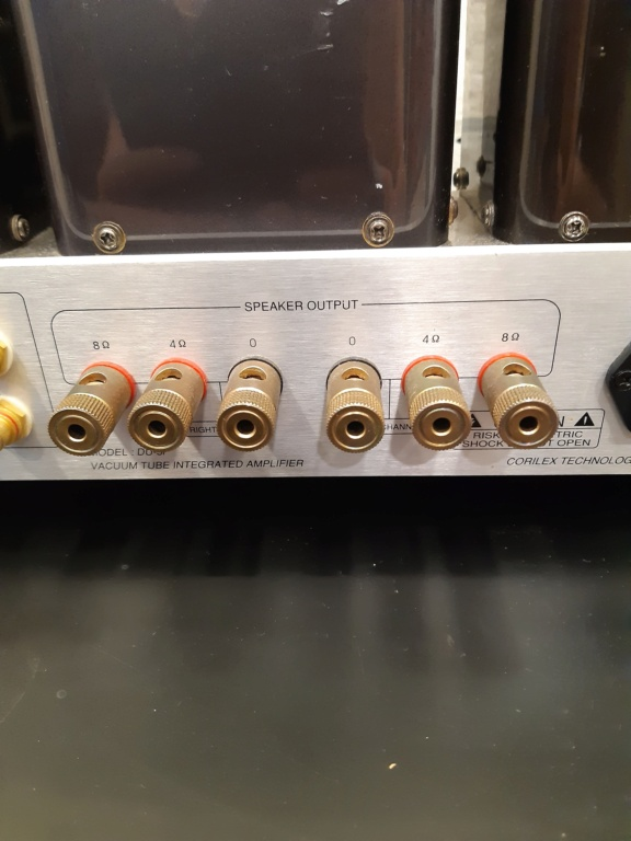 Duntonic vacuum tube amplifier(used) 20210817