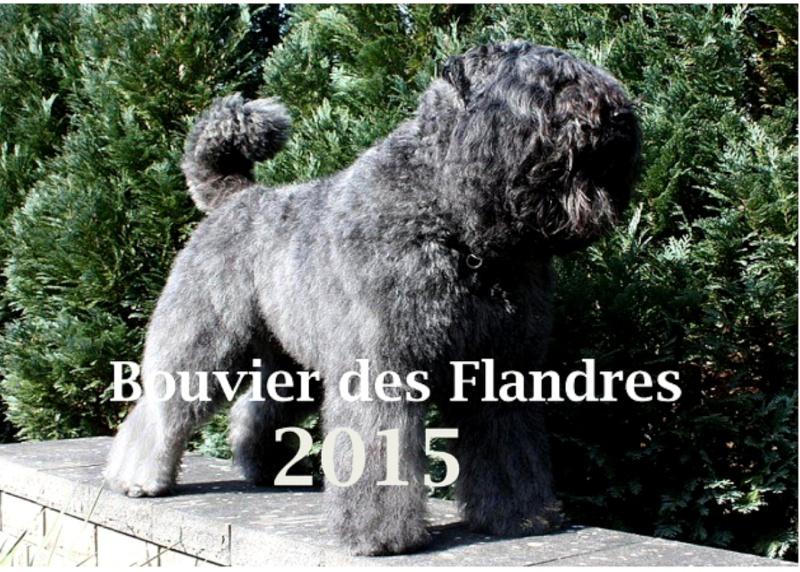 Kalender 2015  Deckbl11