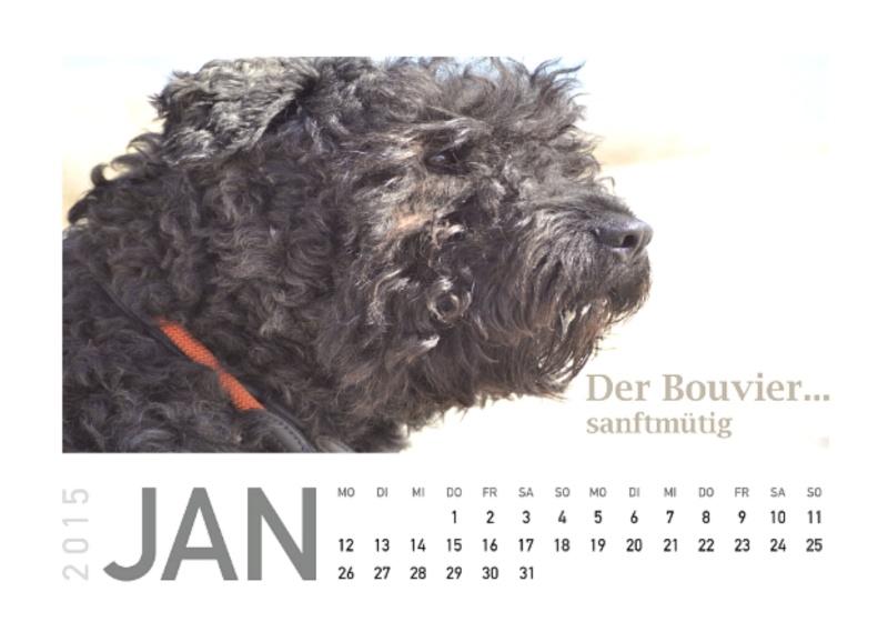 Kalender 2015  Januar11