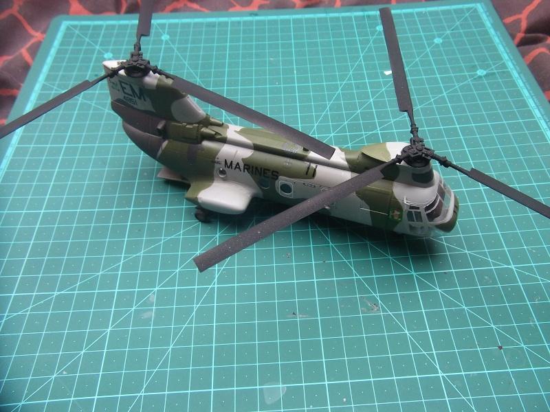 CH-46 Dscf3525