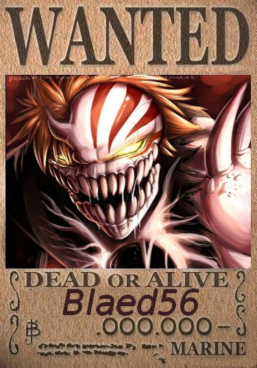 Affiches Wanted  Blaed512