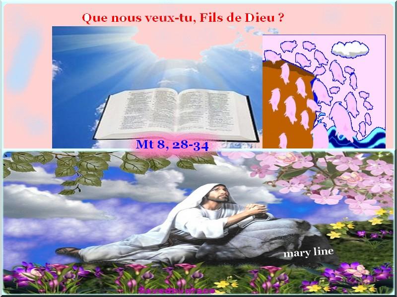 ✞ Paroles /méditations/prières ✞ du 30 juin au 5 juillet Chasse10
