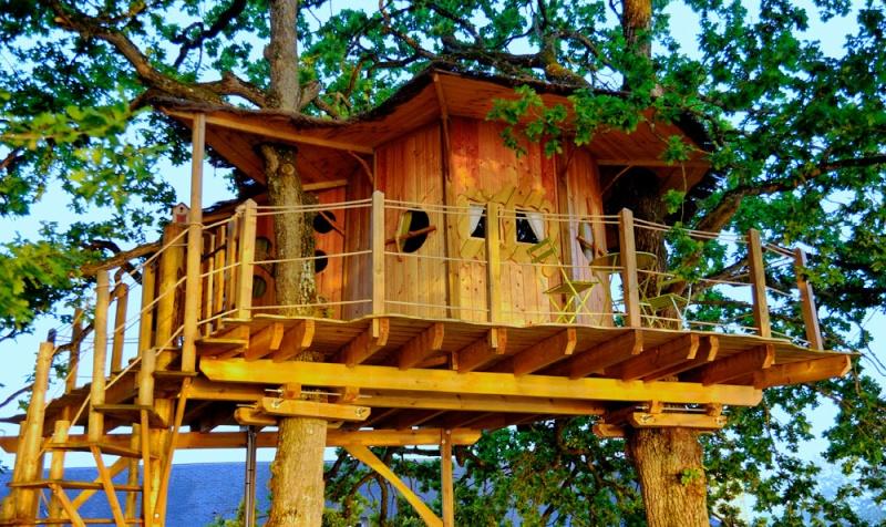 Arbres porteurs pour plateforme dans les arbres Cabane10