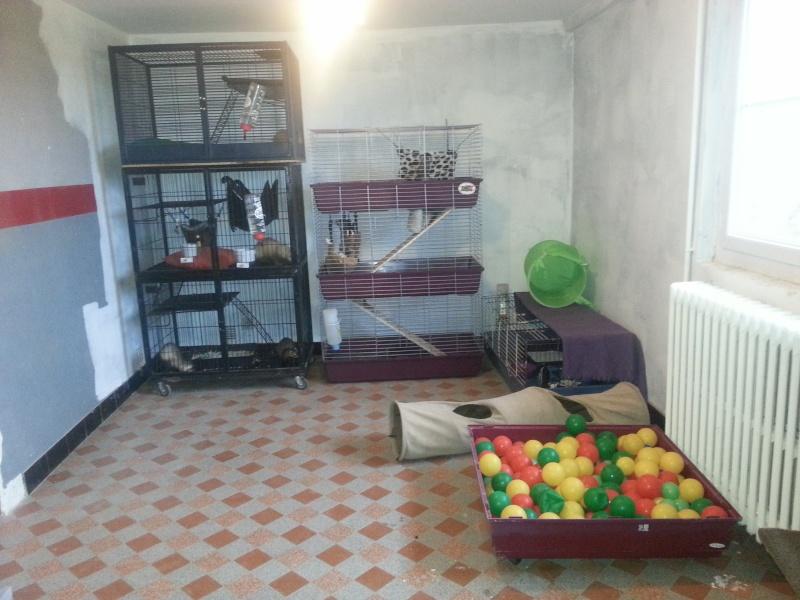 A vendre cage nation 2 (2 étage) 20130610