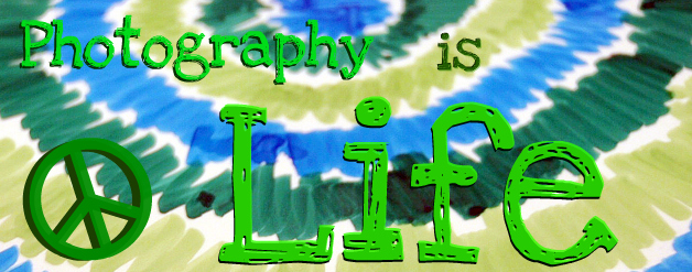 Free forum : Photography is Life - Home Page Awesom11