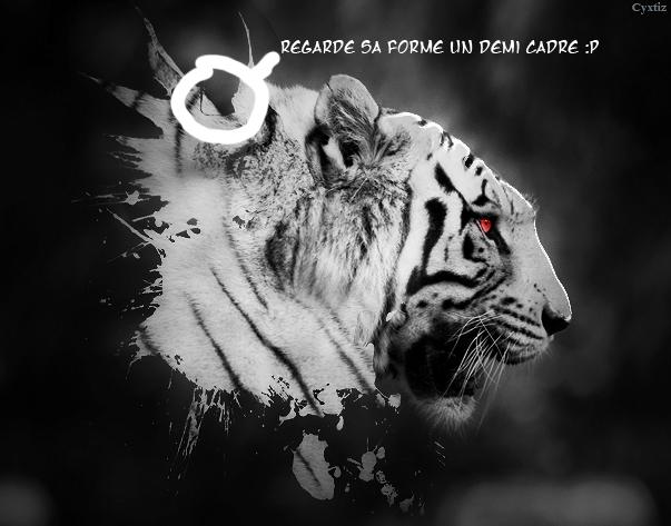 ~ Cyxtiz . Gallery Tiger310