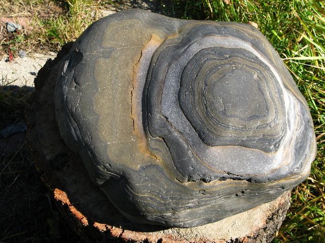 new canadian stones Img_1113